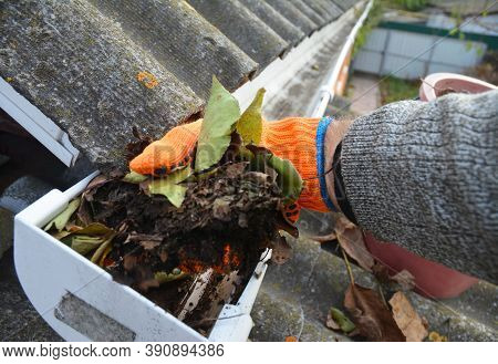 A Man Is Cleaning A Clogged Roof Gutter From Dirt, Debris And Fallen Leaves To Prevent Water Damage
