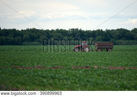 Tractor Work In The Field