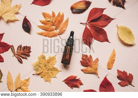 A Bottle Of Anti-aging Serum Next To Autumn Leaves On A Pink Background. Anti Aging Concept.
