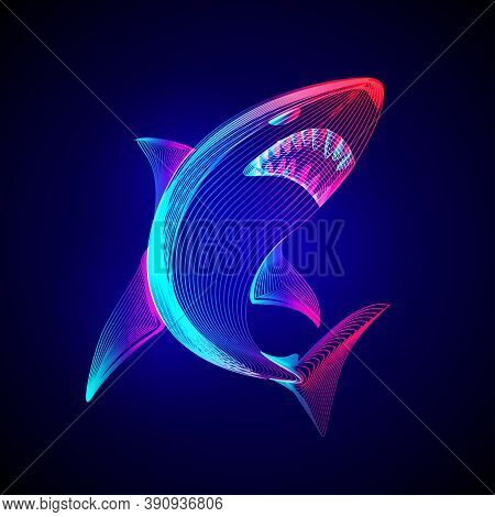Angry Dangerous Shark. Outline Vector Illustration Of Underwater Wildlife Sea Fish Animal In 3d Line