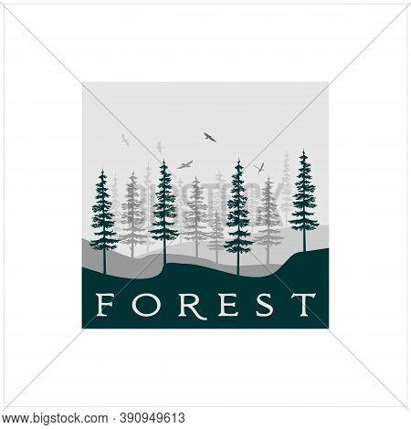 Silhouette Retro Vintage Pine, Evergreen, Fir, Hemlock, Spruce, Conifer, Cedar Trees Forest Logo Des