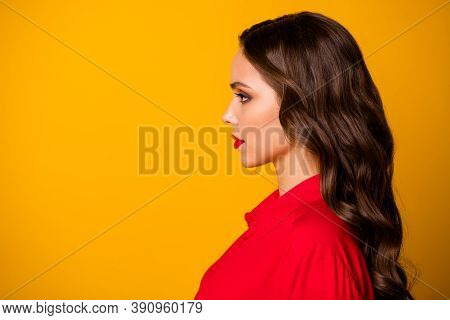 Closeup Profile Photo Of Pretty Stunning Curly Business Lady Bright Lipstick Serious Bossy Person Lo