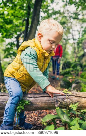 Little Boy Hiking With Mother, Family Adventure. Small Child Walking In Green Forest.