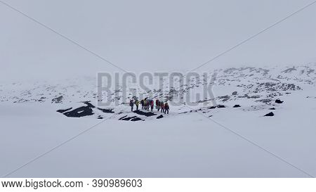 Climbers With Large Backpacks And Trekking Poles Walk Along The Snow-covered Trail. Trekking In The