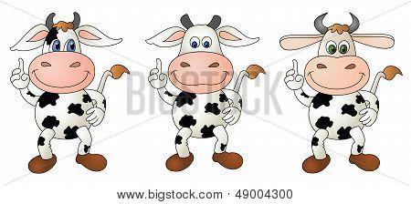 Cow 5 Bare - Composite