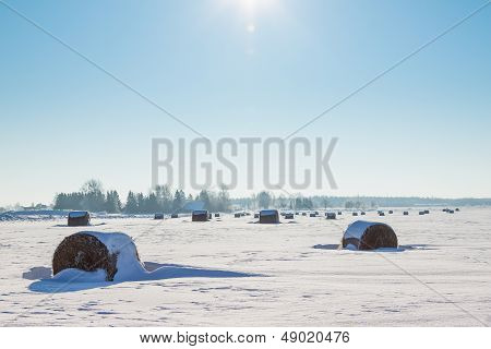Bales Of Hay Laying In The Snow