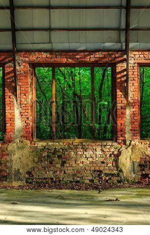Forest Behind The Window Frame Of An Abandoned Hangar