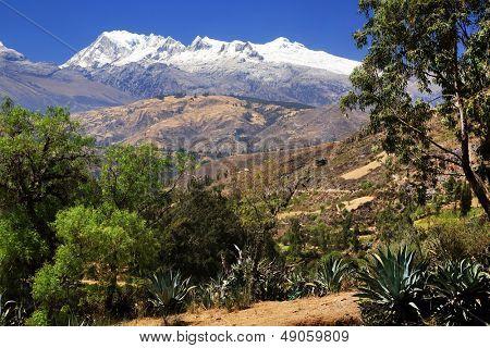 Rio Santa Valley and Cordiliera Blanca, Peru, South America poster