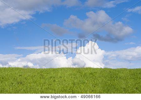 Green Blue Horizon