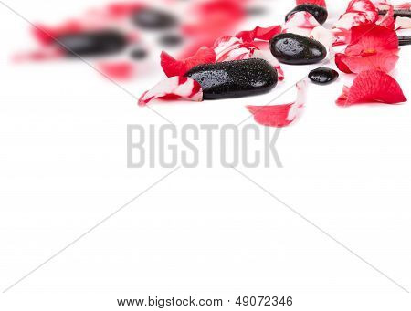 Pink Rose Petals And Stones