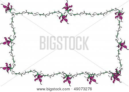 Lily floral border