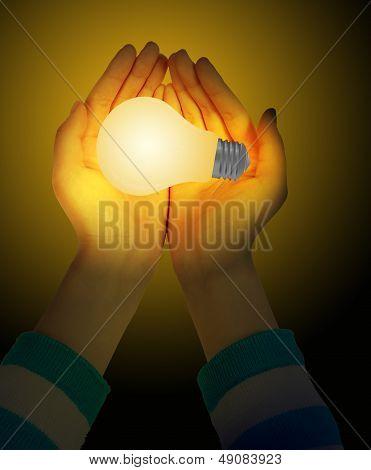 Hand And Bulbs