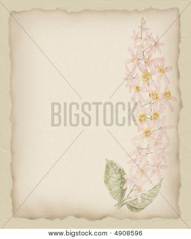 Torn Paper Flower Background 1