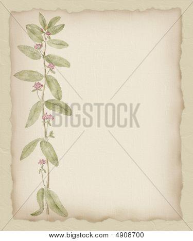 Torn Paper Flower Background 2