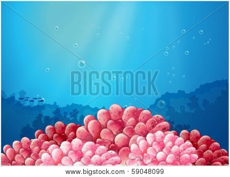 Illustration of the pink corals under the sea on a white background