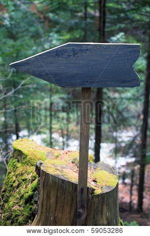 Deep Forest Sign