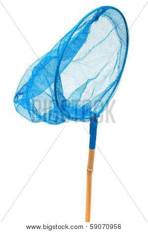 blue insect net on a white background