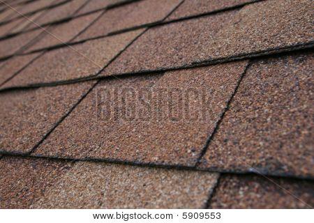 Roof Shingle Detail