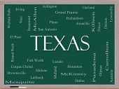 Texas State Word Cloud Concept on a Blackboard with about the 30 largest cities in the state such as Houston Dallas San Antonio and more. poster