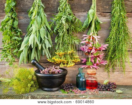 Bunches Of Healing Herbs On Wooden Wall, Mortar With Dried Plants And Bottles