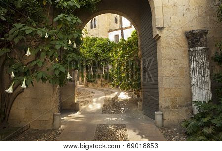 Traditional Andalusian Street