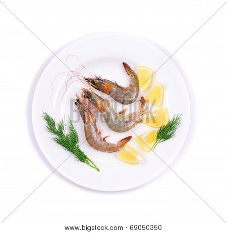 King prawns on the white plate isolated poster