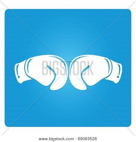 fighting mitten