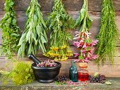 bunches of healing herbs on wooden wall mortar with dried plants and bottles herbal medicine poster