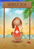 An illustration of a Rescue dog on the beach poster