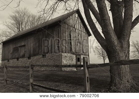 old weathered barn with fence and tree B&W