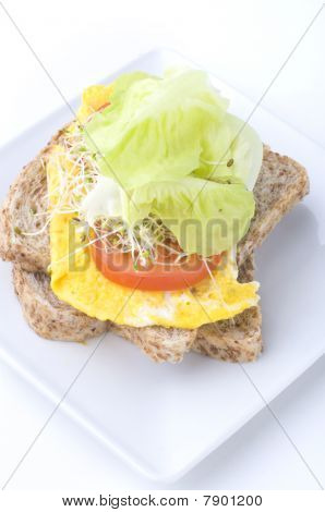 Alfafa Sandwich With Egg