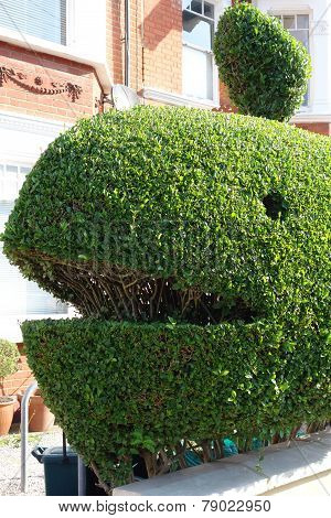 Topiary Whale