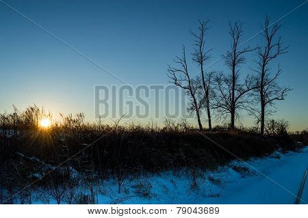 Blue Winter Scene