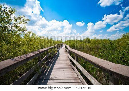 Chekika, Everglades National Park