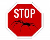 Detailed and colorful illustration of stop sign for spiders poster