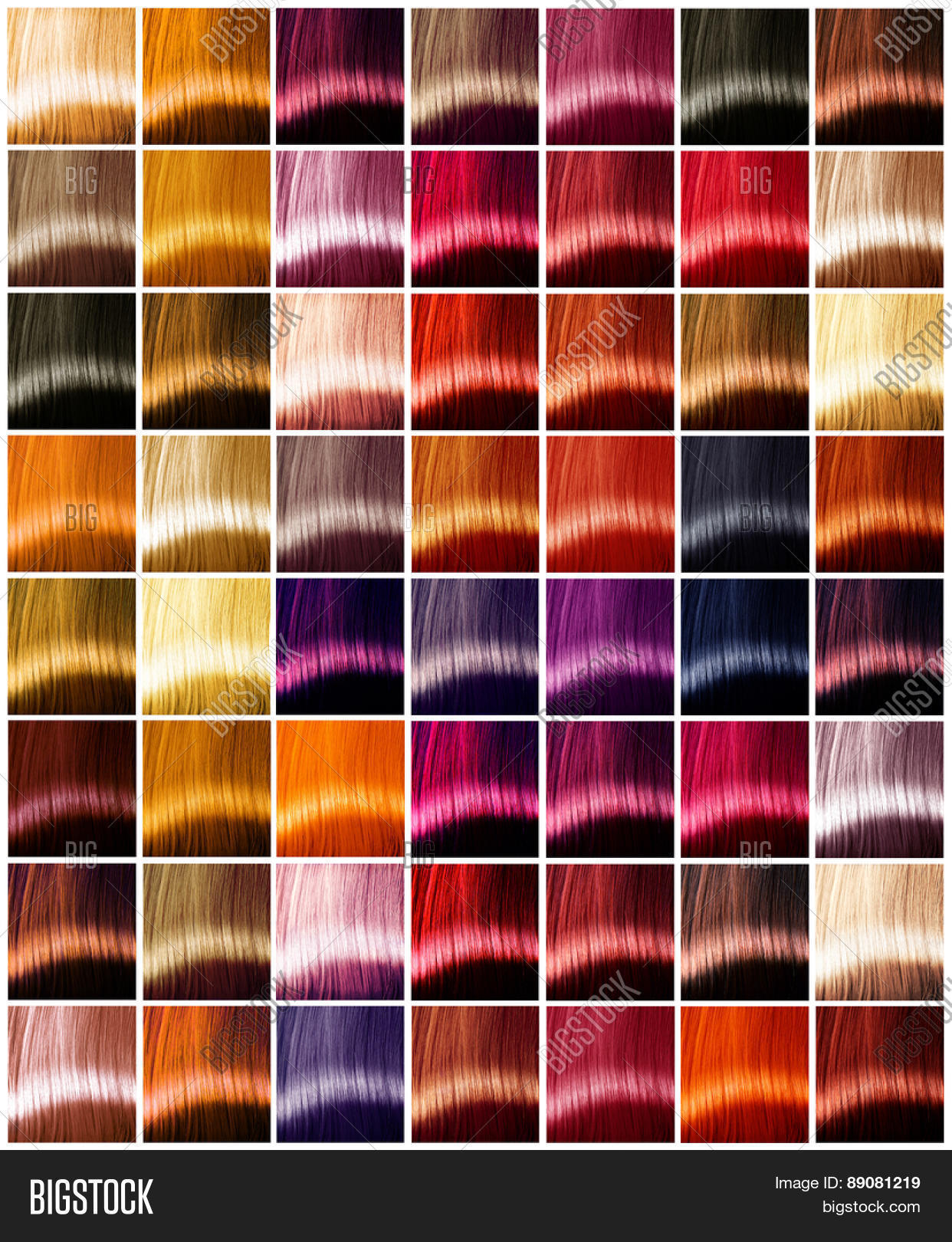 Hair Colors Palette Image Photo