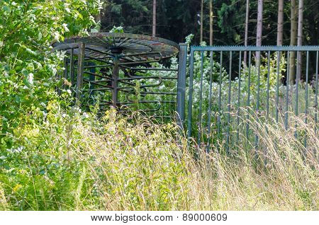 Age Gate Input