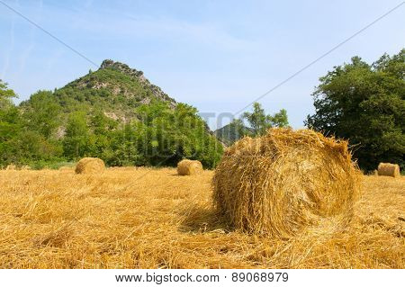Round hay bails in French Drome landscape