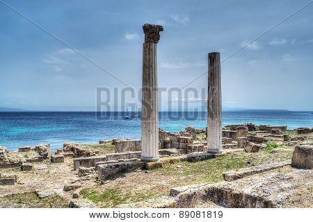 Historic Columns In Tharros