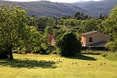 rural landscape with hills and old house, Provence, France. Sunny day poster