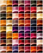 Hair Colors palette. Hair colours set. Tints. Dyed Hair Color Samples poster