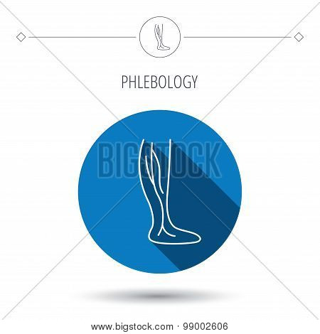 Phlebology icon. Leg veins sign. Varicose or thrombosis symbol. Blue flat circle button. Linear icon with shadow. Vector poster