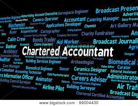 Chartered Accountant Represents Balancing The Books And Accountants