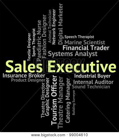 Sales Executive Means Senior Administrator And Career