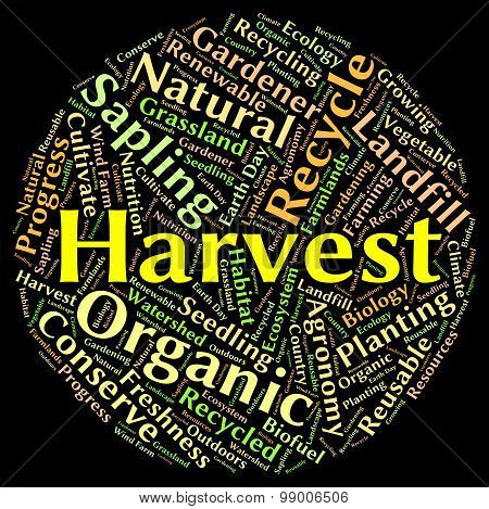Harvest Word Means Produce Grains And Gather