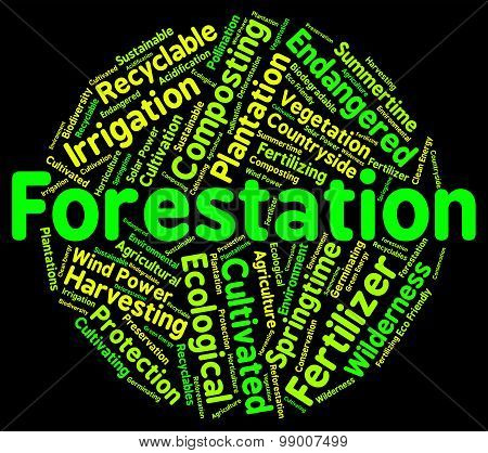 Forestation Word Shows Woodlands Woods And Trees