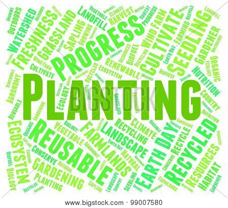 Planting Word Indicates Cultivation Grow And Growth