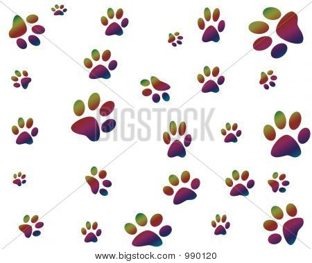 Colorful Paws Print