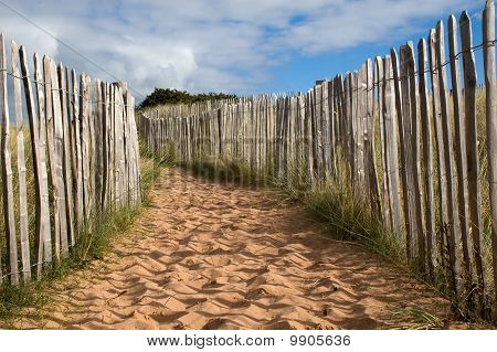 A Sandy Path In Dunes With Wooden Fence