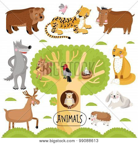 Wild and forest vector animals in white background. Animals set.Cartoon animals characters illustration. Funny Animals. Isolated animals. Differet vector animals. Animals colletion. Forest animals.